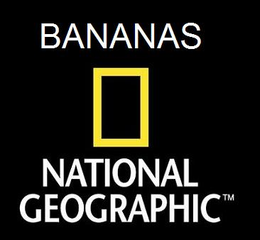 Banana Is My Business Homens Nu Wallpapers Real Madrid